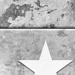 Fototapeta  Gwiazdki na betonie