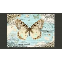 Fototapeta  Pocztówka z motylem