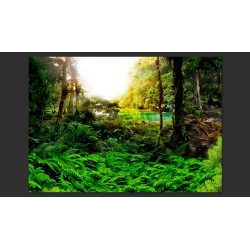 Fototapeta  W tropikach