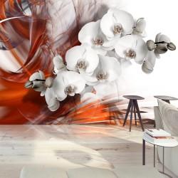 Fototapeta - Orchidea w ogniu II