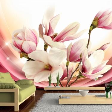 Fototapeta  Magnolia w promieniach