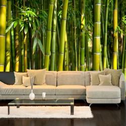 Fototapeta - Orientalny ogród