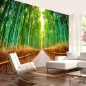 Fototapeta Bambusowy las