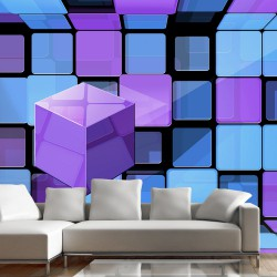 Fototapeta - Kosta Rubika