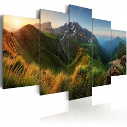 Obraz - Zielona dolina