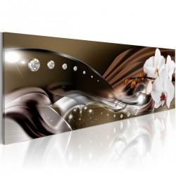 Obraz - Szlak orchidei