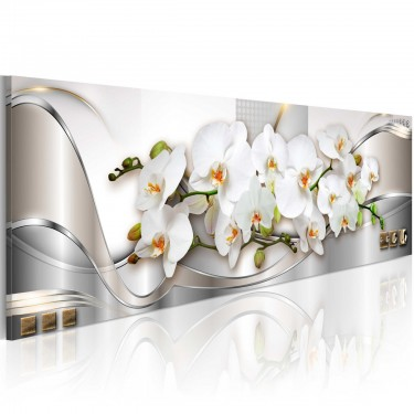 Obraz  Orchidee II