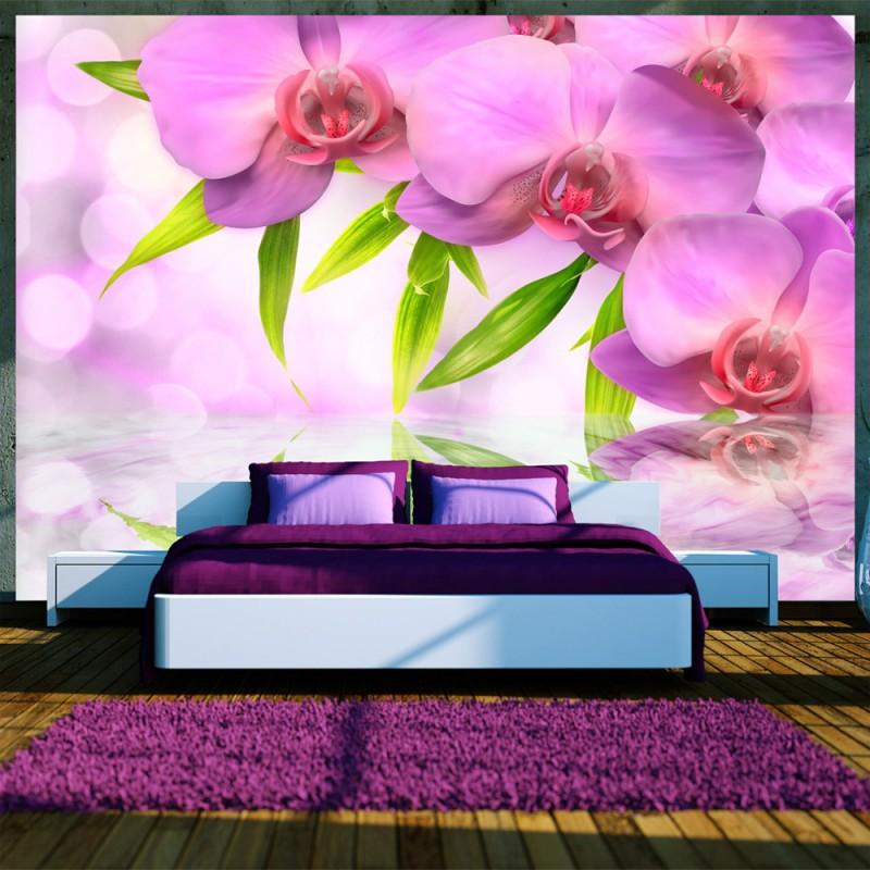 Fototapeta  Orchidee w kolorze lila