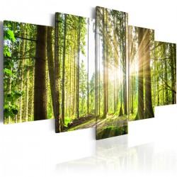 Obraz - Leśne królestwo