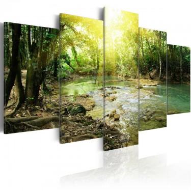Obraz  Leśna rzeka