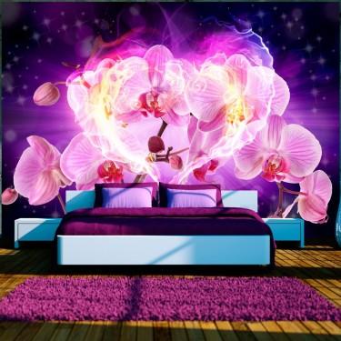 Fototapeta - Orchidee w płomieniach