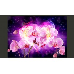 Fototapeta  Orchidee w płomieniach