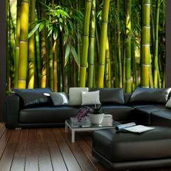 Fototapeta - Azjatycki las bambusowy