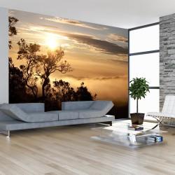 Fototapeta Niebo i drzewa