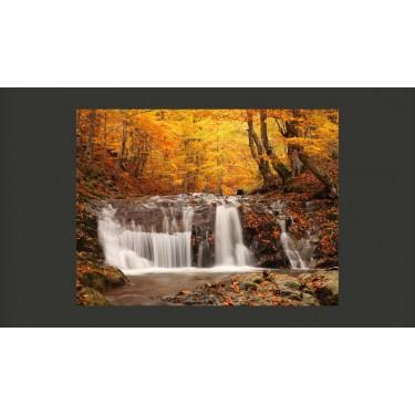 Fototapeta  Autumn landscape  waterfall in forest
