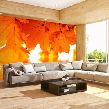 Fototapeta  liście  jesień