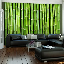 Fototapeta - Bambusowa ściana