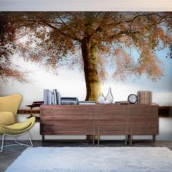 Fototapeta - Drzewo nad brzegiem jeziora