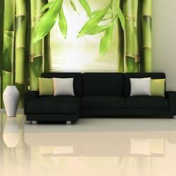 Fototapeta - Bambus i zen