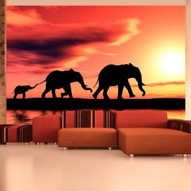 Fototapeta  słonie rodzina