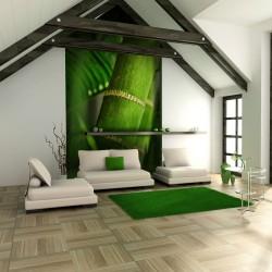 Fototapeta - bambus - detal