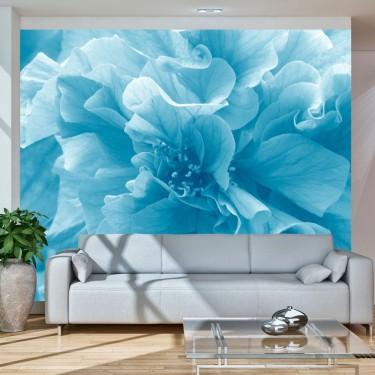 Fototapeta  Blue azalea