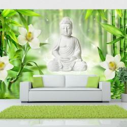 Fototapeta Budda i natura