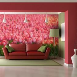 Fototapeta Wiosenna łąka świeże różowe tulipany