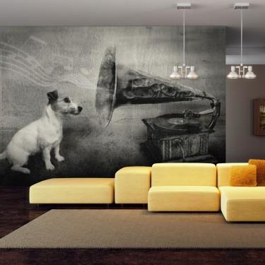 Fototapeta  Dogs melodies