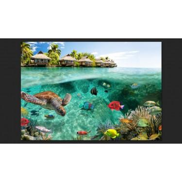 Fototapeta  Pod powierzchnią wody