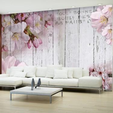 Fototapeta  Kwiaty jabłoni