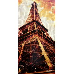 Wizyta w Paryżu