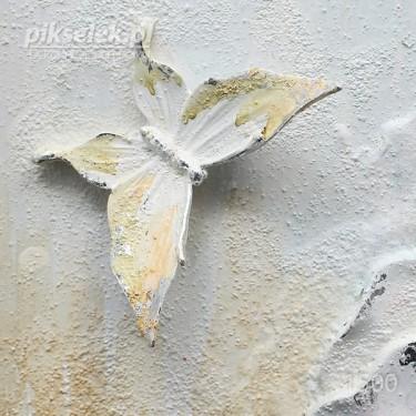 Motyle, kwiaty i muszelki
