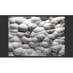 Fototapeta  Białe kamienie i mech