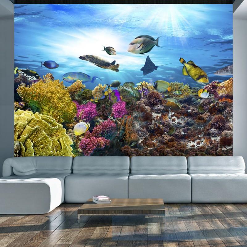 Fototapeta  Rafa koralowa
