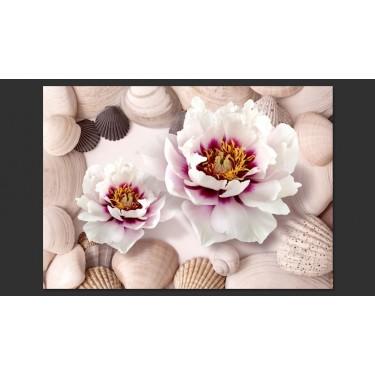 Fototapeta  Kwiaty i muszle