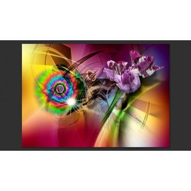 Fototapeta  Magiczne światło kolorów