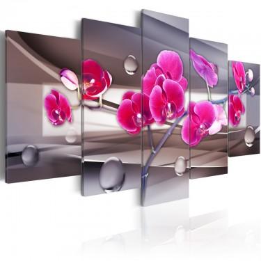 Obraz  Orchidea na stonowanym tle