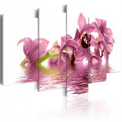 Obraz - Lilie zanurzone w wodzie