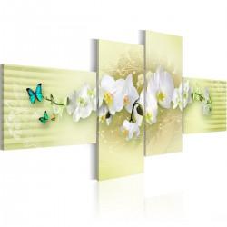 Obraz Pastelowa orchidea