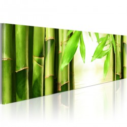 Obraz Bamboo gate
