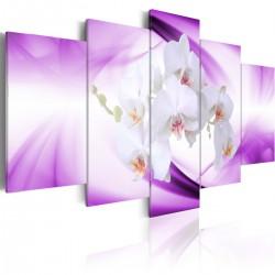 Obraz Cudowna roślina orchidea