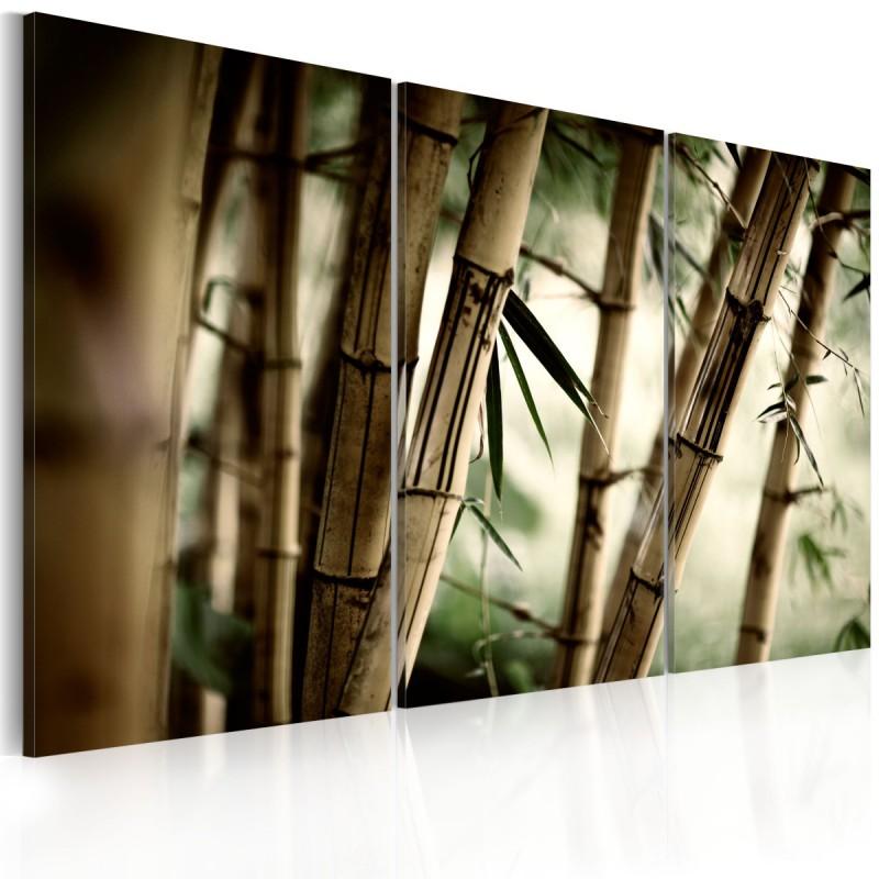 Obraz  W tropikalnym lesie