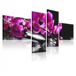 Obraz Różowa orchidea i kamienie Zen