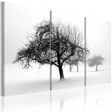 Obraz  Drzewa zanurzone w bieli