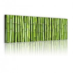 Obraz Bambusowa ściana