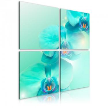 Obraz  Błękit orchidei