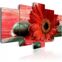 Obraz Gerbera i kamienie Zen