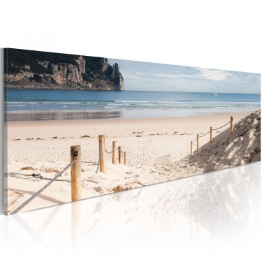 Obraz  Scieżka na plaży