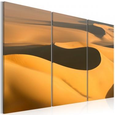 Obraz - Bezkresne piaski pustyni